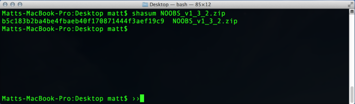 Checking the SHA sum within the terminal.